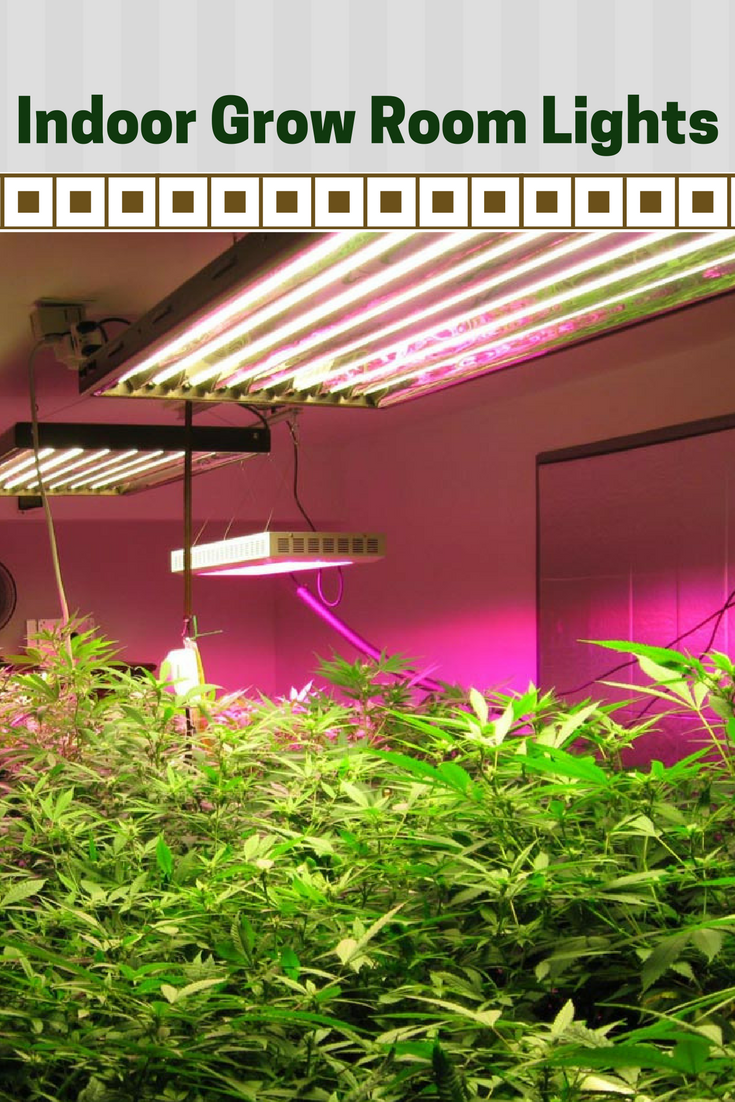 Indoor Grow Room Lights