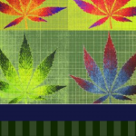 Enchanting, Funky and Abstract Marijuana Wall Art