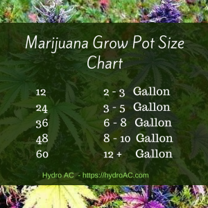 Cannabis Plant Grow Pot Size Chart