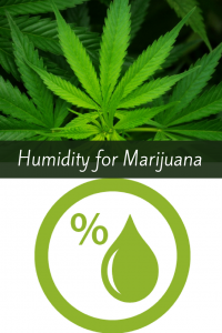 Humidity for growing Marijuana
