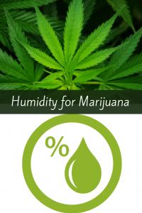 Humidity for growing Marijuana