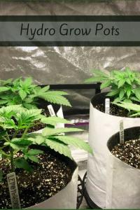 Hydro Grow Pots - cannabis grow pots