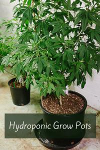 Hydroponic Grow Pots
